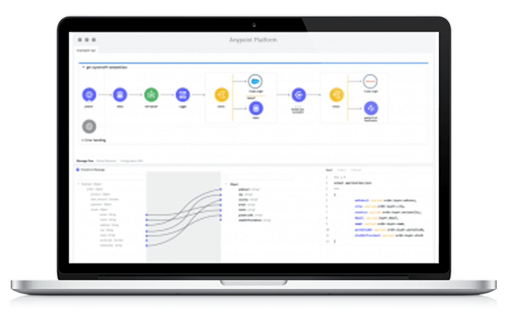 Mulesoft Panel, IBM. Mulesoft, Pragma Edge, Pragmaedge, B2B, B2B solution,